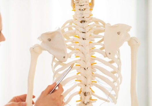 Infected Spine Disc Treatments