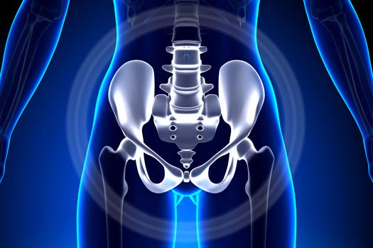 Learn How the Position of Your Pelvis Affects Pain in Santa Monica, CA