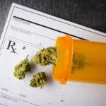 Medical Marijuana for Chronic Low Back Pain