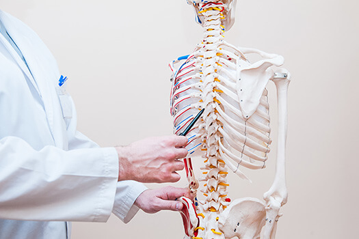 Softening of the Spinal Cord