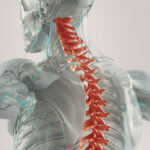 How Are Spine Misalignment & Impaired Vision Connected?