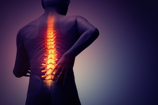 All About Back Pain & Spinal Anatomy in Los Angeles, CA