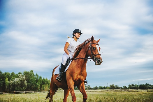 Tips to Prevent Back Pain while Horseback Riding in Los Angeles, CA